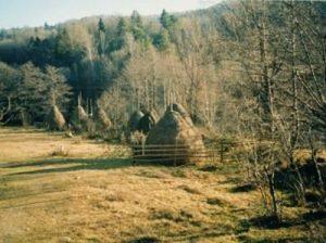 Haystacks near house